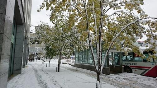 20161106 札幌駅北口