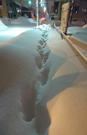 20161225 豪雪②