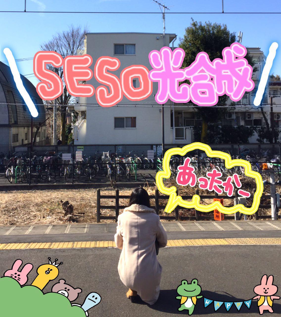 photo_2017-02-08_22-54-40.jpg