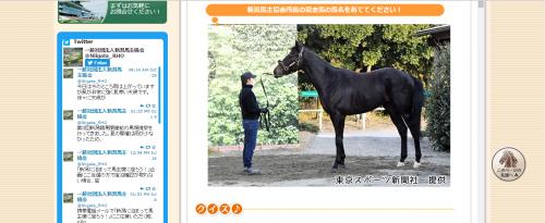 新潟県馬主協会2017-01-14 (4)