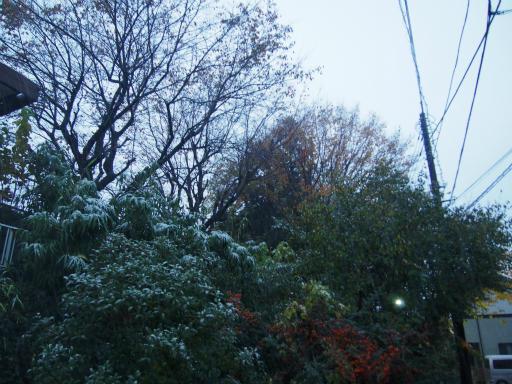 20161124・11月なのに初雪1-05・6時20分