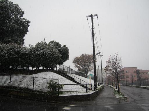 20161124・11月なのに初雪1-13・7時05分=海谷公園