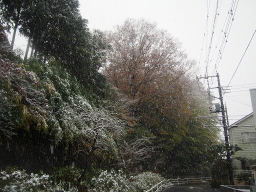 20161124・11月なのに初雪空09・7時25分