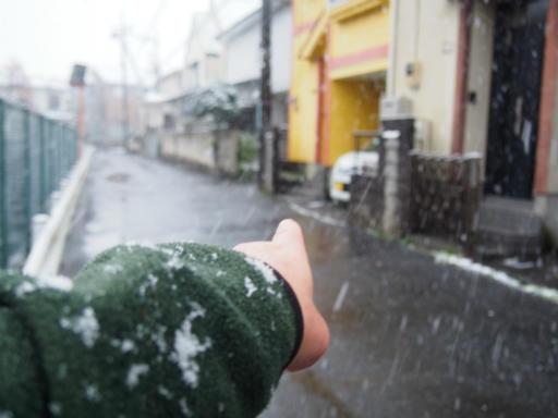 20161124・11月なのに初雪ビミョー1