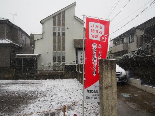 20161124・11月なのに初雪ネオン1