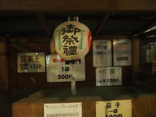 20161203・秩父夜祭ネオン16