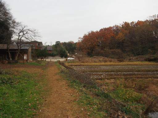 20161204・チラシを見て散歩2-16