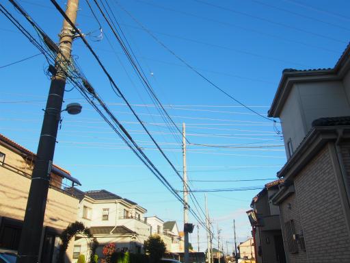20161211・八国山散歩1-05・電線銀座
