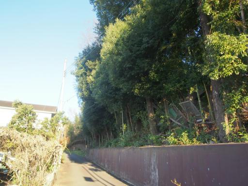 20161211・八国山散歩1-11
