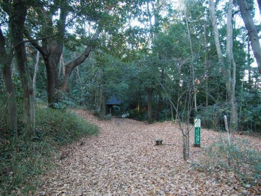 20161211・八国山散歩1-23