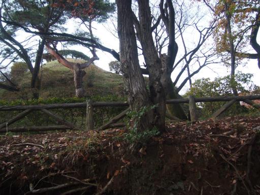 20161211・八国山散歩2-19・荒幡富士