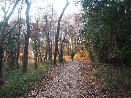 20161211・八国山散歩空10