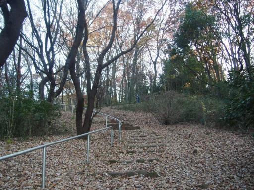 20161211・八国山散歩空08