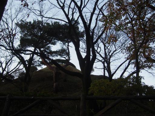 20161211・八国山散歩空15・荒幡富士