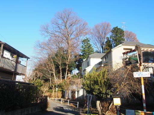 20161225・狭山富士散歩1-02