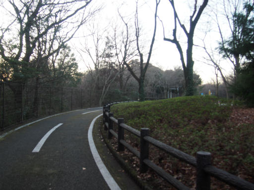 20161225・狭山富士散歩2-19