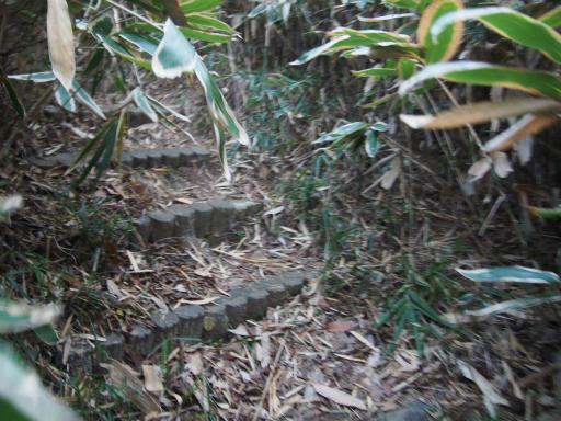 20161225・狭山富士散歩3-02