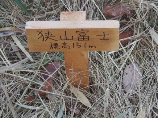 20161225・狭山富士散歩3-07