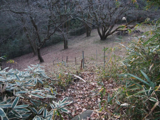 20161225・狭山富士散歩3-24