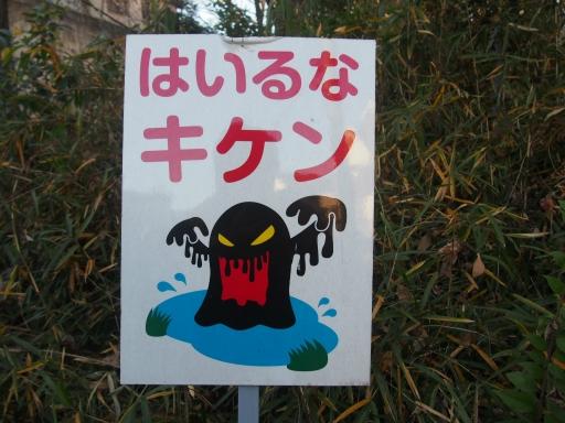 20161225・狭山富士ネオン1