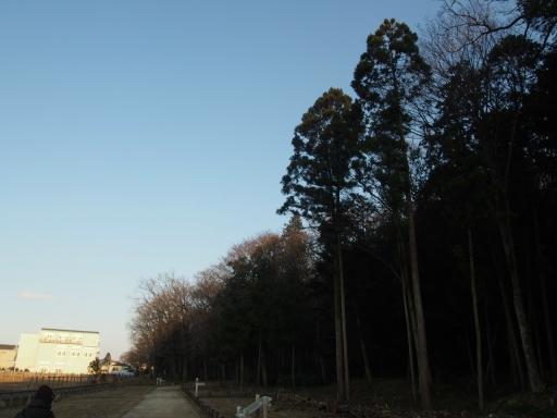 20170104・瑞穂町を歩く空01・浅間神社・大