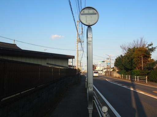 20170104・瑞穂町を歩く鉄写09・富士山