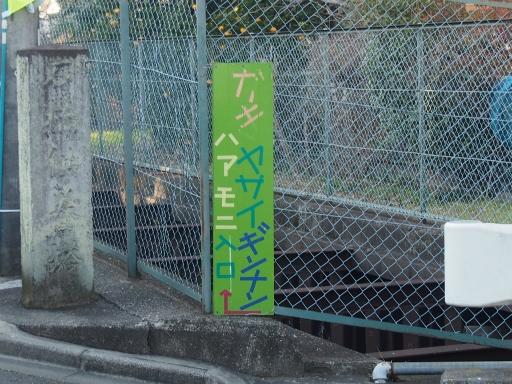 20170104・瑞穂町を歩くネオン01・小手指南
