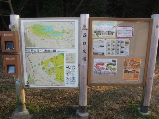20170104・瑞穂町を歩くネオン09