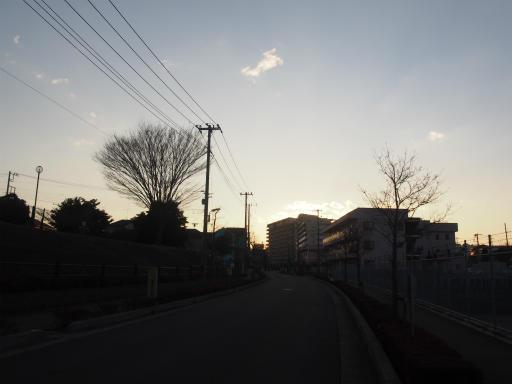 20170122・空とワンちゃん20