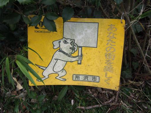 20170129・永源寺散歩1-22
