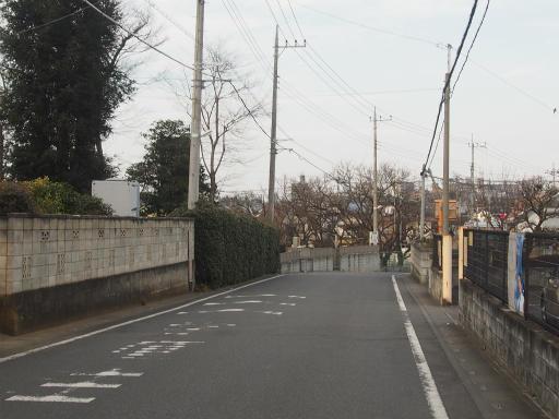 20170129・永源寺散歩2-16