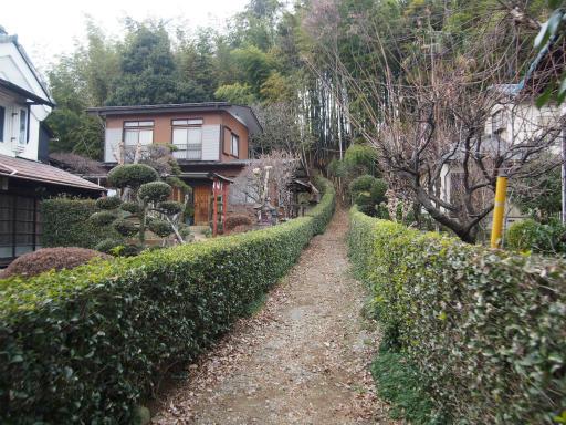 20170129・永源寺散歩3-18
