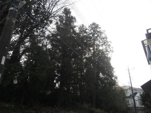 20170129・永源寺散歩空02