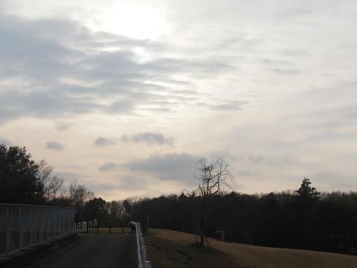 20170129・永源寺散歩空10・ドレミの丘