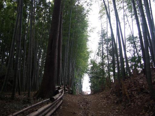 20170129・永源寺散歩空19