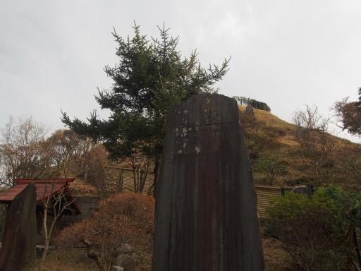 20170129・永源寺ネオン05