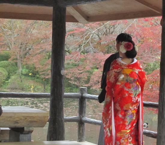 京都市植物園0001_4