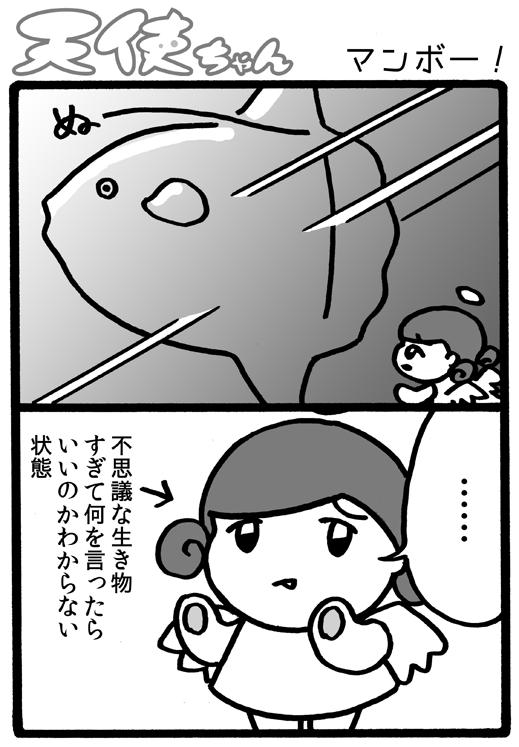 天使ちゃん_マンボー!161225