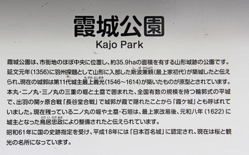 霞城公園2017-2