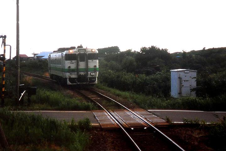 P1000521.jpg