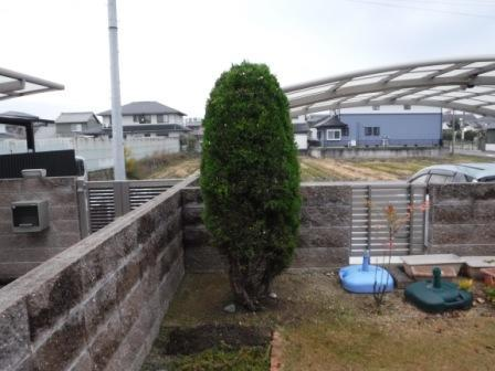 1庭の剪定2