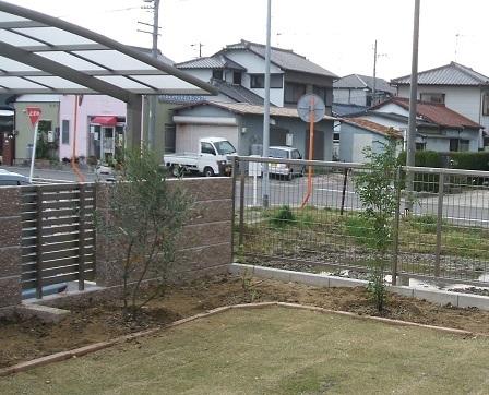1庭の剪定7