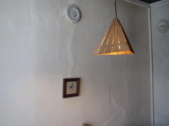 Delta Light 010