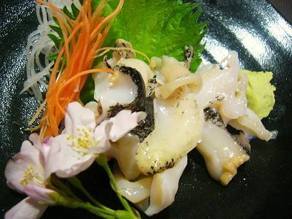 つぶ貝刺身2 (3)