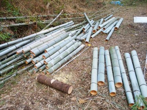 500竹を切ったら宝が出た1612213
