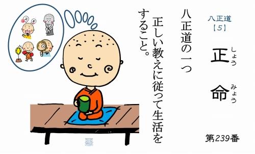 500仏教豆知識シール239 八正道【5】5正命