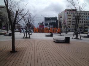 IMG_2722.jpg