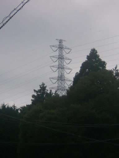 東富士線77号