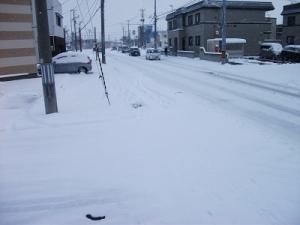 161211青森市雪
