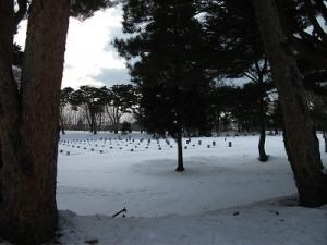170209整列墓